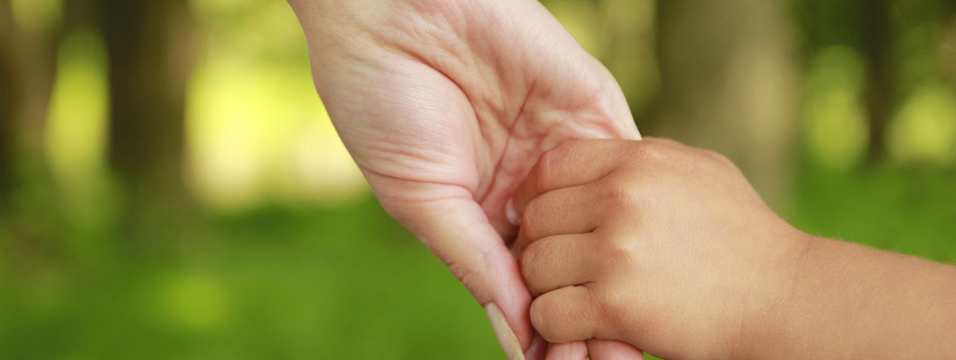 http://www.dreamstime.com/stock-image-parent-holds-hand-small-child-image33703371